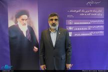 کمالوندی: در صورت نقض برجام توسط آمریکا ایران هم حق دارد بخشی از تعهدات یا همه آن را اجرا نکند