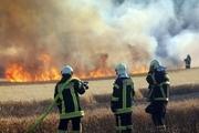 صاعقه در کازرون مزرعه 25 هکتاری را به آتش کشید