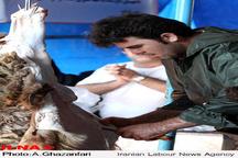 بررسی وضعیت بیماری تبکریمهکنگو در مازندران  شناسایی موارد مشکوک در شهرهای نور، نوشهر، چالوس و کلاردشت