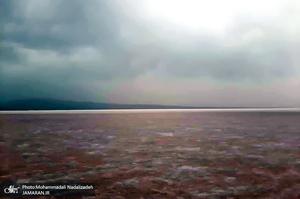 خشکی«حوض سلطان»؛ خطر طوفان نمک پایتخت را تهدید میکند