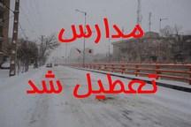 تعطیلی مدارس نوبت عصر در پنج منطقه آموزشی آذربایجان غربی به علت بارش برف