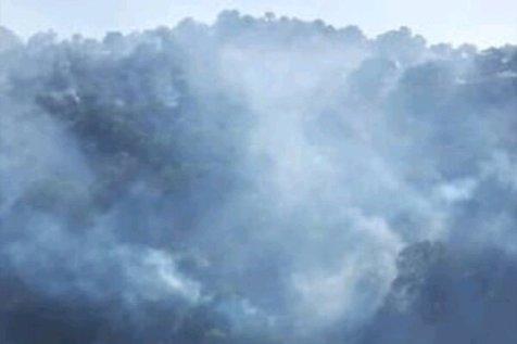 تکذیب آتش سوزی 40 هزار هکتاری
