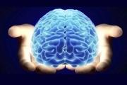 آیا حافظه کوتاه مدت شما خوب کار می کند؟