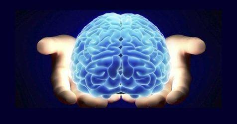 اینفوگرافی/ نشانه های خشکی مغز