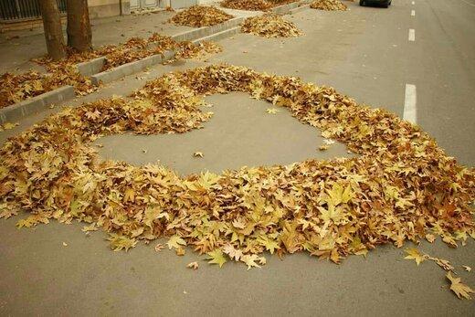 هنرنمایی پاکبانان ارومیهای با برگهای پاییزی   عکس
