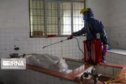 راهکارهای مقابله با تهدیدات زیستی کرونا در سمنان پیگیری شد