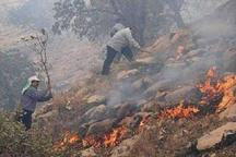 آتش سوزی اراضی کشاورزی و مراتع دشتی مهار شد
