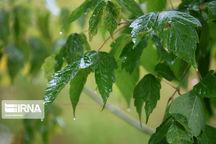 احتمال بارش پراکنده باران در خراسان رضوی وجود دارد