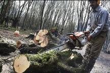 کشیک قضایی نوروزی در حوزه حفاظت از اراضی ملی برقرار می شود