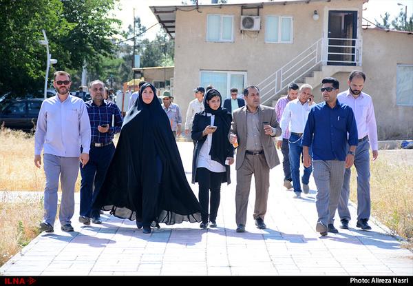بازدید شهردار و اعضای شورای شهر محمدیه از طرح های عمرانی