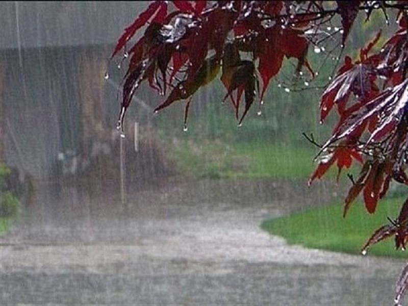 بارش باران و برف تا پایان هفته در البرز