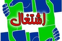 پنج هزار نفر در طرح کارورزی استان تهران جذب می شوند