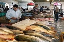 افزایش روزانه صادرات ماهی جنوب به خارج از کشور بازار ماهی فروشان اهواز آماده برای مهمانان نوروزی