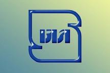 تولید سه محصول غیراستاندارد در قزوین متوقف شد