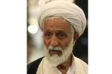رئیس فراکسیون روحانیون مجلس:نباید از سخنان حضرت امام تفسیرهای دلخواه کنیم