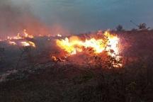 کاهش 40 درصدی آتش سوزی در اراضی ملی قزوین