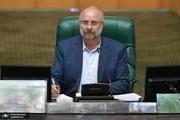 رییس مجلس:  اگر مجاهدت سربازان انقلاب نبود، دشمن از ارتکاب هیچ جنایتی علیه ملت ایران دریغ نمیکرد