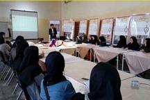 کارگاه آموزشی رنگرزی سنتی در قزوین برپا شد
