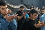 بازگشت مهدی طارمی به بوشهر+ تصاویر