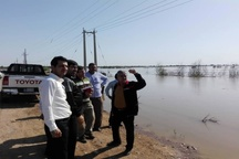 بازدید اعضای شورای هماهنگی حراست های صنعت آب و برق خوزستان از مناطق سیل زده غرب استان