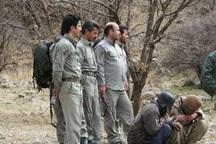 253 شکارچی غیرمجاز در خراسان جنوبی دستگیر شدند