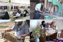 امسال سه هزار نفر در مناطق محروم زنجان آموزش های فنی و حرفه ای را فرا می گیرند