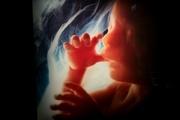 کرونا برای جفت جنین خطرناک است