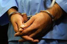 سارقان اثاثیه 13 منزل مسکونی دستگیر شدند