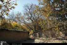 هدف کانون کارآفرینی فارس، توسعه روستای فاروق مرودشت است