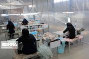 مشارکت اقتصادی زنان کشور ۱۶.۹ درصد است