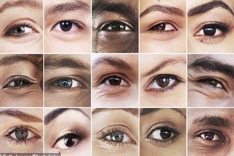 ۵۰ ژن که در تعیین رنگ چشم دخالت دارند