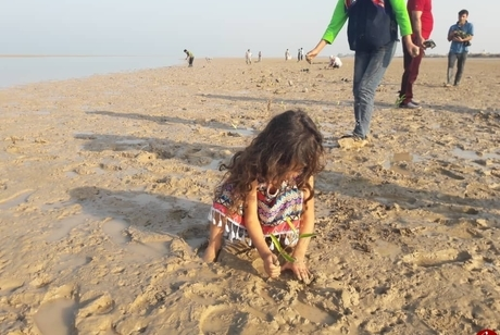 عادی انگاری کرونا در ساحل گناوه