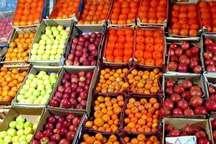 میوه شب عید در 100 نقطه استان اردبیل توزیع می شود