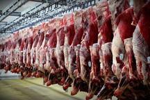 2400 تن گوشت در استان بوشهر توزیع شد