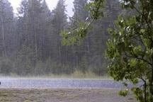 بارشها در اردبیل هفت درصد افزایش یافت