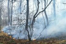 آتش در هفت نقطه از عرصه های جنگلی و مرتعی گلستان مهار شد
