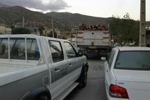 محموله چوب قاچاق در سروآباد توقیف شد