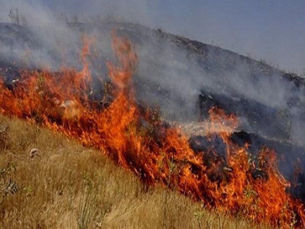 ۵ هکتار مرتع  رفسنجان در آتش سوخت