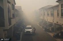 آتش سوزی گسترده کالیفرنیا و تخلیه هزاران نفر+ تصاویر