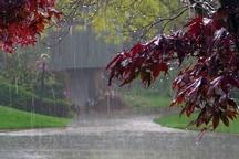 بارش پراکنده باران فردا در مازندران