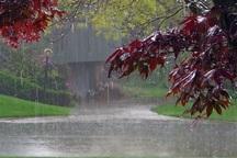 بارندگی خوب در راه است
