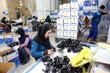 65 درصد سهم اشتغال مددجویان بهزیستی کردستان تحقق یافت
