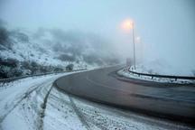 برف سنگین جاده کرج - چالوس را مسدود کرد
