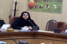 زنان شهید کرد گمنام در کنگره 5400 شهید کردستان به جامعه معرفی می شود