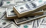 رشد افسارگسیخته قیمت سهام عامل گرانی سکه و دلار است