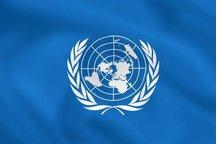 وظیفه سازمان ملل متحد حمایت از دولت ایران بوده/ برخی از اقلام امدادرسانی برای سیلزدگان ایرانی فراهم شد
