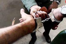 دستگیری اعضاء باند خانوادگی جیب بری در مهران