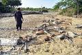 سیل ۲۹ میلیارد تومان به عشایر سیستان و بلوچستان خسارت زد