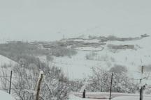برف راه ارتباطی 32 روستای کوهرنگ را بست