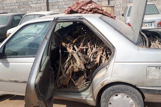 ۲ قاچاقچی چوب در آرانوبیدگل دستگیر شدند